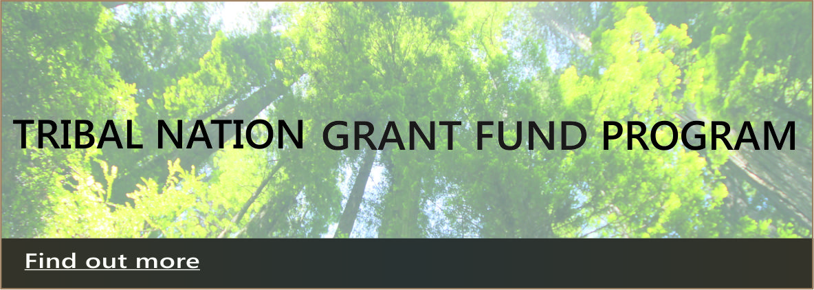 Tribal Nation Grant Fund Program